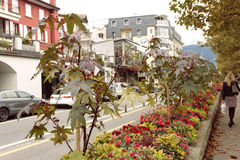 Waterfront in Vevey, Switzerland Royalty Free Stock Photos