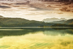 Waterfront from Walchensee Bavaria Stock Images