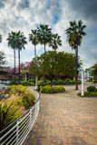 Waterfront walkway in Long Beach  Royalty Free Stock Photography
