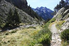 Waterfull i berg i den Tena dalen, Pyrenees Panticosa Royaltyfria Bilder