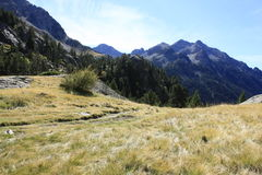 Waterfull i berg i den Tena dalen, Pyrenees Panticosa Arkivbild