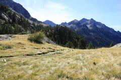 Waterfull in montagne in valle di Tena, Pirenei Panticosa Fotografia Stock