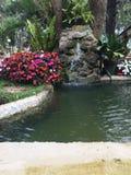 Watergeluid in een tuin royalty-vrije stock afbeeldingen