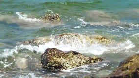 Watergolven die op grote stenen behandelde zeeschelpen op overzees strand bespatten Oceaangolven met schuim het breken op rotsach stock videobeelden