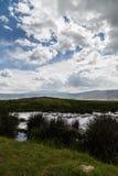 Waterhole кратера Ngorongoro стоковое изображение rf