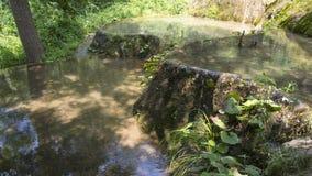 waterhole Photographie stock