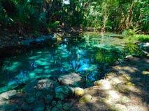 Waterhole Stock Photography