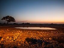 Waterhole. Okaukuejo waterhole, Etosha National Park, Namibia Stock Photos