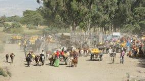 Waterhole stora Rift Valley, Etiopien, Afrika Arkivfoto