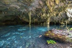 Waterhole subterráneo imagenes de archivo