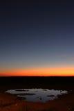 Waterhole at sunset royalty free stock photo