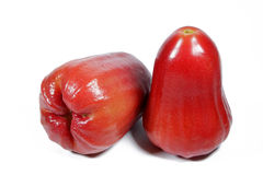 Waterige Rose Apple stock foto's