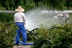 Watering Stock Images