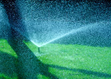 watering Stock Photography