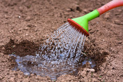 Watering the beds Royalty Free Stock Photography