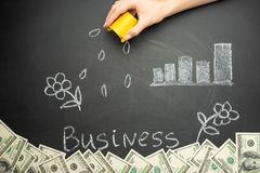 Watering and business word in a concept board for business growth, investment, savings and making money, a lot of dollars royalty free stock image