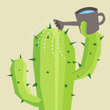 Watering cactus Stock Photography