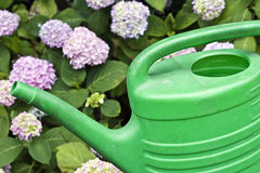 Free Watering Can Royalty Free Stock Images - 15019689