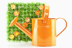 Watering-can Lizenzfreies Stockbild