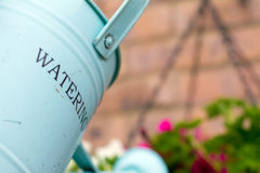 Watering can. Green metal watering can over a hanging basket Royalty Free Stock Image