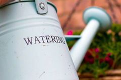 Watering can. Green metal watering can over a hanging basket Royalty Free Stock Images