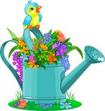 Watering can. With bouquet of wild flowers Royalty Free Stock Photo