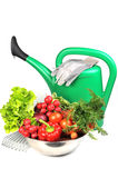Watering Can And Vegetables. Stock Images