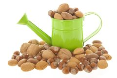Assortment nuts Stock Image