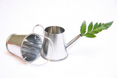 Watering can and bucket Stock Image
