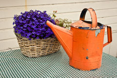 Watering Can and Flower Basket Royalty Free Stock Image