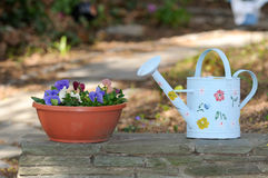 Watering Can and Flower Pot Royalty Free Stock Photo