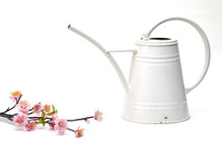 Watering can with flower. On a white background stock photos