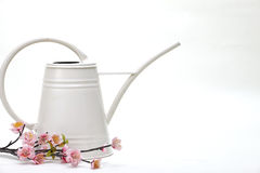 Watering can with flower. On a white background stock images