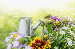 Watering can in flowerbed royalty free stock photos