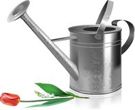 Watering can and flowers. Stock Photo