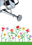 Watering can and flowers Royalty Free Stock Photo