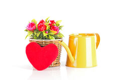 Watering can with flowers and red heart Royalty Free Stock Photography