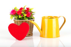 Watering can with flowers and red heart Stock Photography