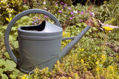 Watering can in garden Royalty Free Stock Image