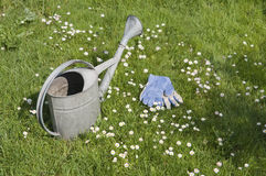 Watering can and garden gloves on blooming lawn Stock Image