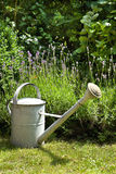 Watering-can in the garden Royalty Free Stock Photos