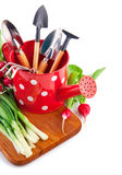 Watering can with garden tools and fresh vegetables Royalty Free Stock Image