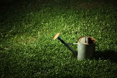 Watering can on grass royalty free stock photo
