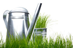 Watering can with grass and garden tools Royalty Free Stock Photo