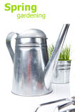 Watering can with grass and garden tools Royalty Free Stock Photography