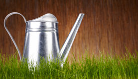 Watering can with grass and garden tools Stock Images