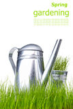 Watering can with grass and garden tools Royalty Free Stock Photos