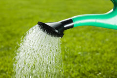 Watering can and grass Stock Photo