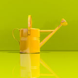 Watering Can on Green Royalty Free Stock Image