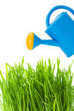 Watering can and green grass Royalty Free Stock Photos